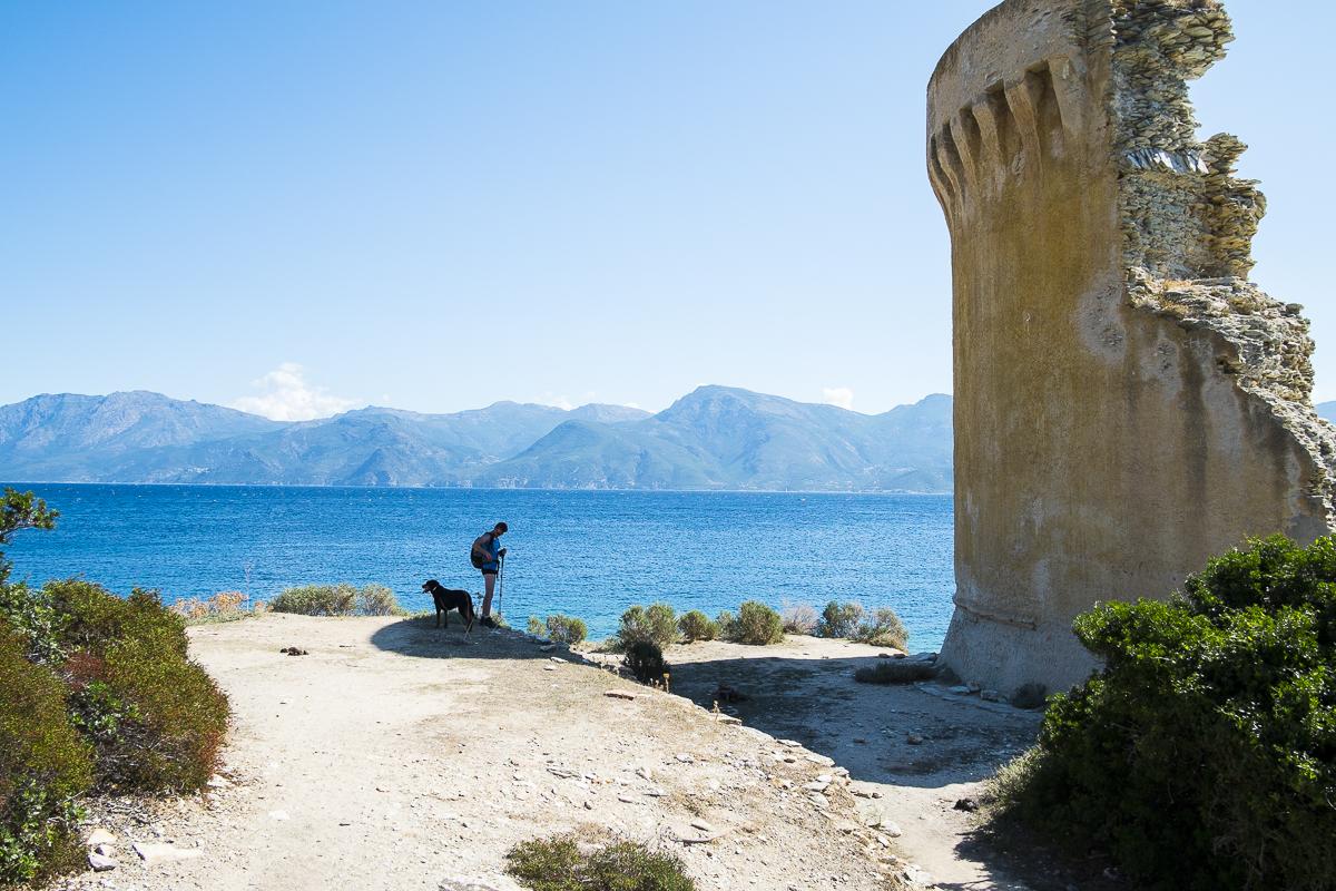 Corsica diary